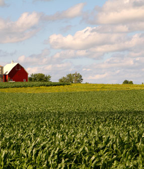 Eau Claire WI farm land for sale