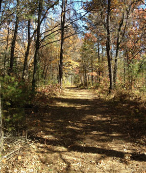 Trempeauleau county hunting land for sale