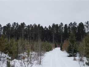 Springbrook Land Real Estate