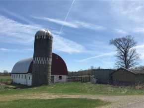 Springbrook Farm Real Estate