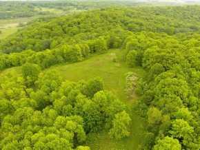 Boyceville Land Real Estate