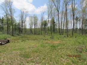 Thorp Land Real Estate