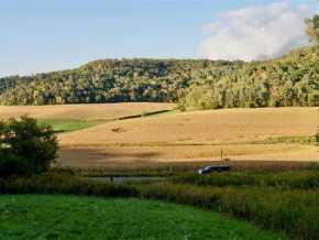 Arcadia Land Real Estate