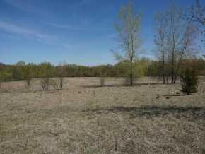 Ellsworth Land Real Estate