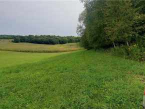 Eleva Land Real Estate